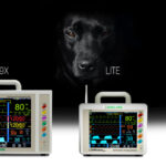 Accessory care for LifeWindow 9X, Lite and One