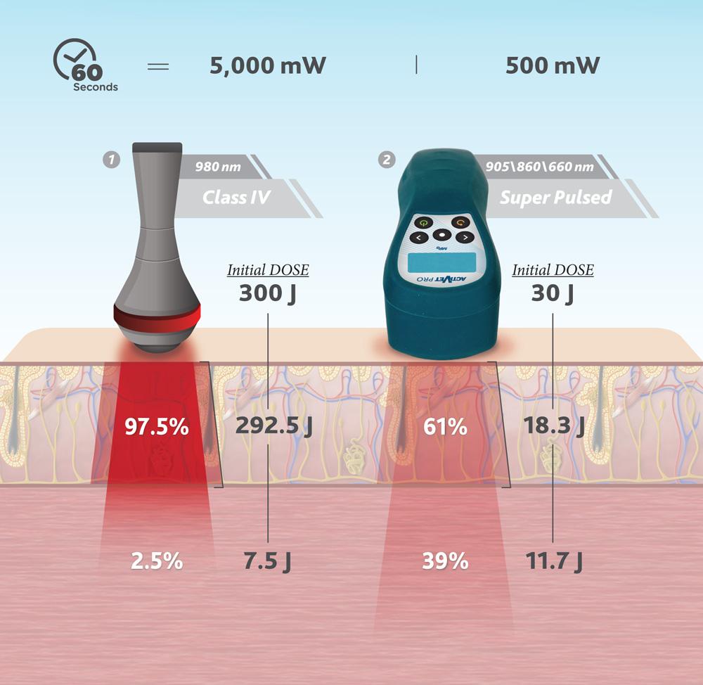 Multi Radiance ActiVet PRO Equine penetration